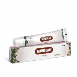 Минискар крем, Супер эффективный крем от растяжек, Miniscar Cream Charak
