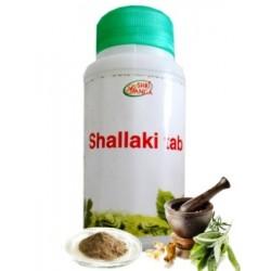 Шаллаки Шри Ганга, Shallaki Shri Ganga
