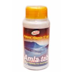 Амла в таблетках, Амлаки укрепление имунной системы Шри Ганга, Amla tab Shri Ganga 200таблеток