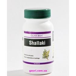 Шалаки (Шаллаки) лечение заболеваний суставов, Shallaki Guardyan, 60капсул