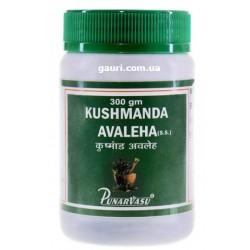 Кушманда Лехья Расаяна (джем), пищеварительная, мочеполовая, респираторная системы, Kushmanda Avaleha