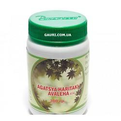 Агастья Харитаки авалеха расаянам, лечение хронического бронхита и астмы, Agastya Haritaki Rasayanam, Nej Biotech, 300грамм