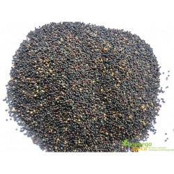 Чёрная Горчица, 100 грм.