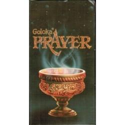 Благовоние безосновное Goloka Prayer с ароматом Ладана