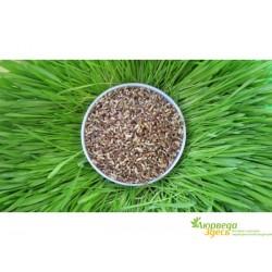 Мука из Пророщенной Пшеницы 500г., Борошно з Пророщеної Пшениці, истинно диетический продукт