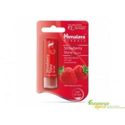 Бальзам для губ Клубничный блеск, Himalaya Herbals Strawberry Shine Lip Balm