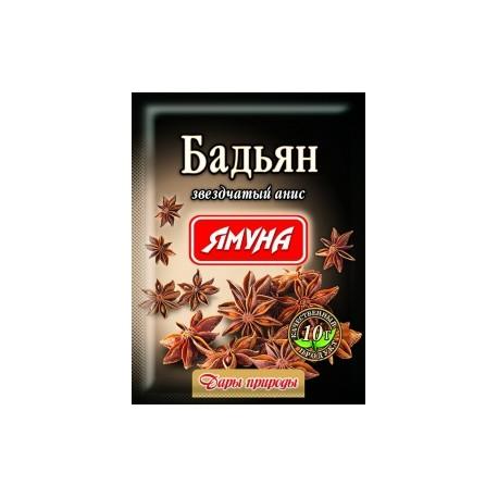 Бадьян - Звёздный анис, свежие специи в Киеве 10 грамм