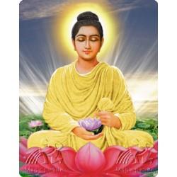 Магнит с изображением Шри Будда