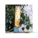 Благовоние пыльцовое Chandan Flora, 100г., Sree Vani, эксклюзивный аромат изысканного Сандала!